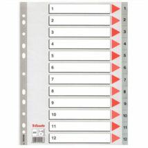 Regiszter, műanyag, A4, 1-12, ESSELTE, szürke