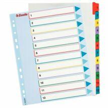 Regiszter, laminált karton, A4 Maxi, 1-12, újraírható, ESSELTE
