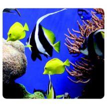 """Egéralátét, újrahasznosított, FELLOWES """"Earth Series™"""", tengeri halak"""